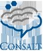logo_consalt_top